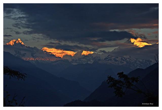 Himalayan Sunrise,Manul,Sikkim