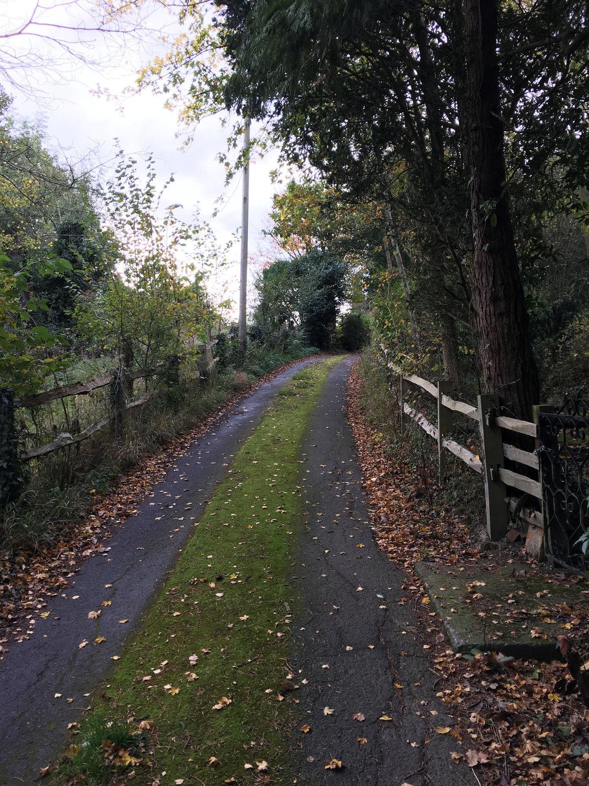 2 Ashurst Circular Walk