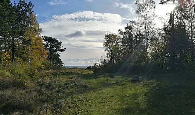 Autumn at Granhaugen, Greve, Denmark