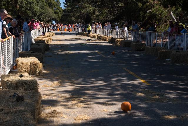 3rd Annual Pumpkin Rolling Contest Carmel-by-the-Sea