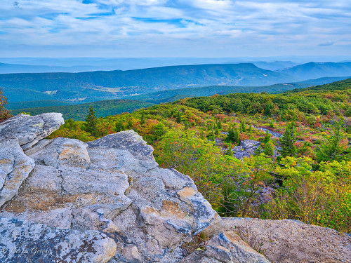 blueberrybushes westvirginia autumn background clouds dollysods fall landscape landscapemountain mountains rocks trees