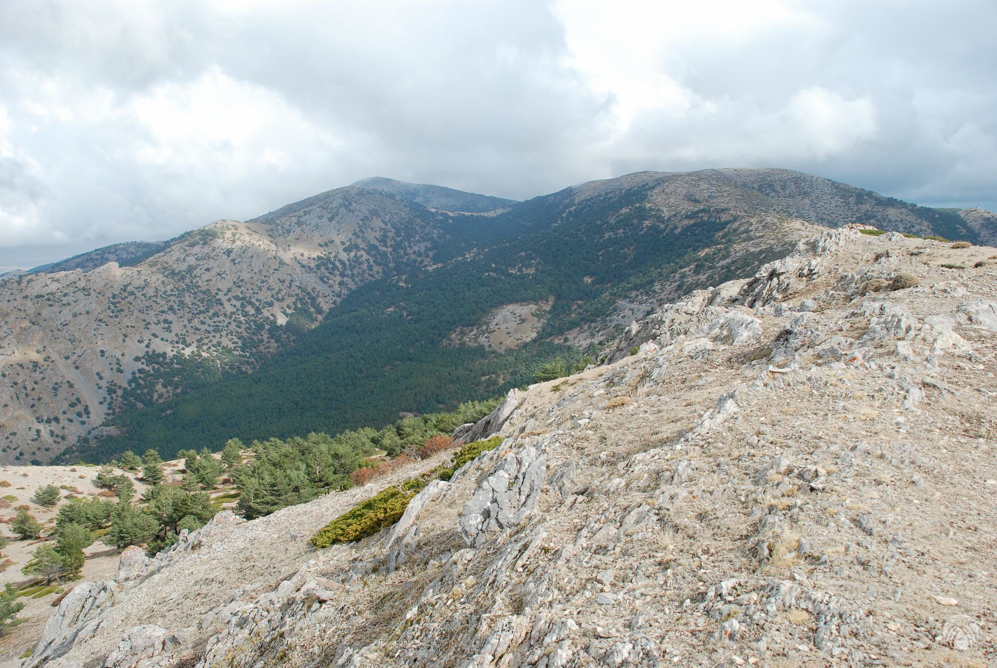 Vistas hacia la Boleta y Santa Bárbara