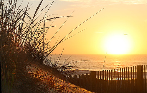 dunes ocean city canon sl1 waves sunrise seascape water sand grass reflexion