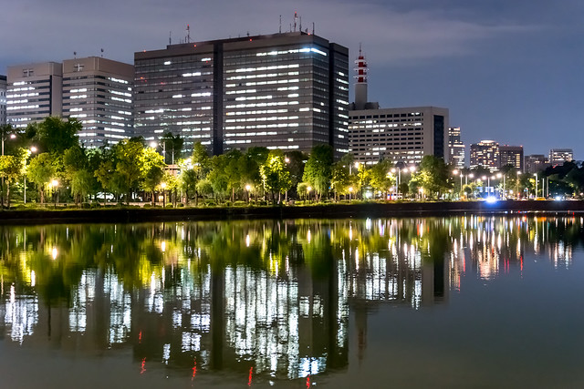 Tokyo Reflection