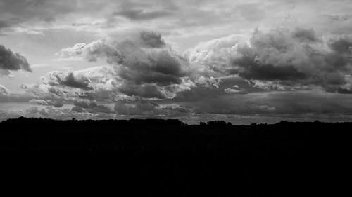 blackandwhite bw monochrome 1v2 nikon1v2 v2 2014 autumn fall colors woodland cloud fields 2565 october nikon michigan barrycounty sky onthisdate 279366