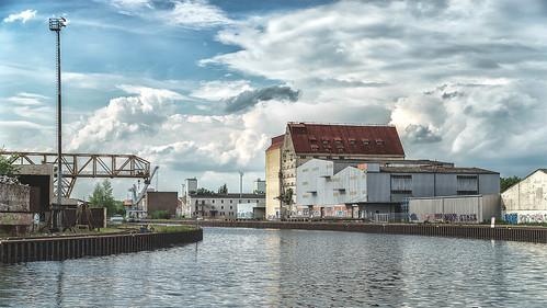 harbour paintig