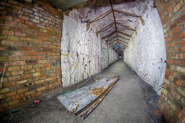 Epsom Shelter
