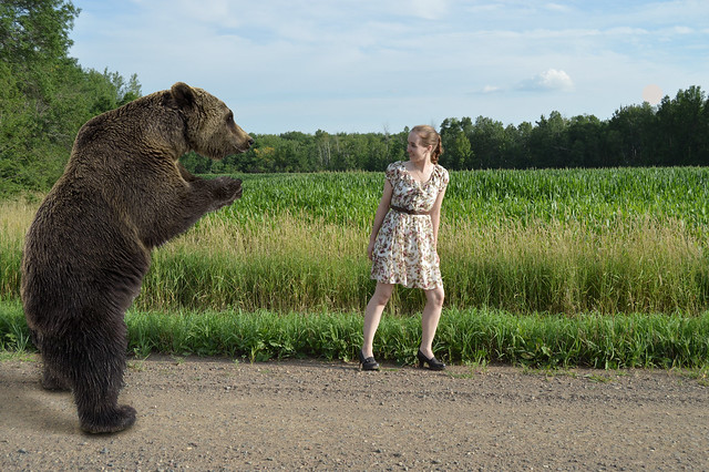 Meeting a Bear