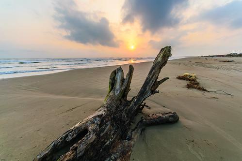 mexican mexico nikond5300 sigma1020 tuxpan veracruz beach coastal driftwood ilobsterit sand sunrise mx