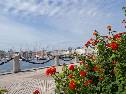 Una vista distinta de La Marina. #Coruña #photography #olympusomd #marina | by treboada