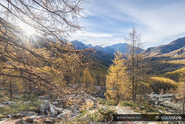 La mattina d'autunno (Val d'Ayas, Valle d'Aosta)