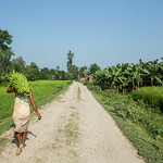 34308-022: Commercial Agriculture Development Project in Nepal