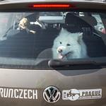 foto: RunCzech