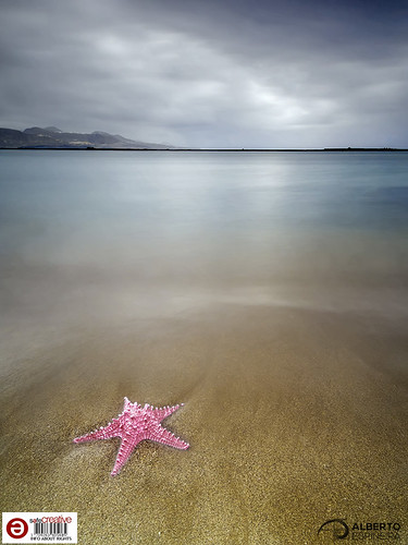What if there were starfish in Las Canteras? (Synthetic resin starfish) 04   by Alesfra