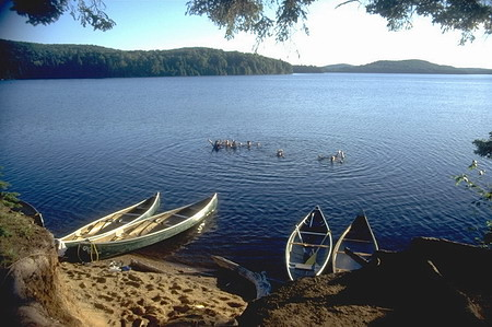 Algonquin Park Swimming | by Voyageur Quest and the Algonquin Log Cabin