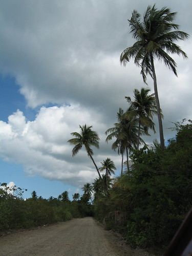 One of the finer roads, Western Vieques | by Tanya R.
