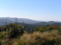 Silver Peaks   by dnzwoman
