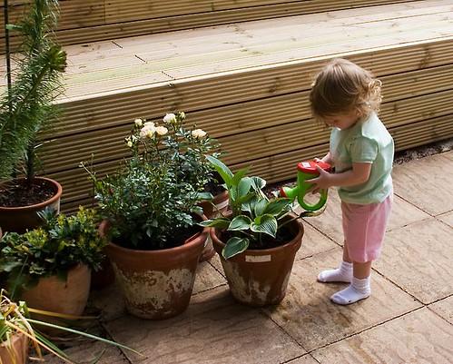 Angel Watering the Flowers