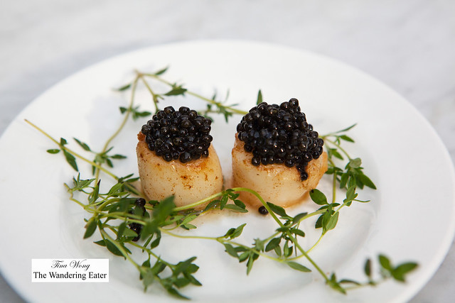 Seared scallops topped with Petrossian Transmontanus caviar