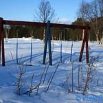 54--Inari