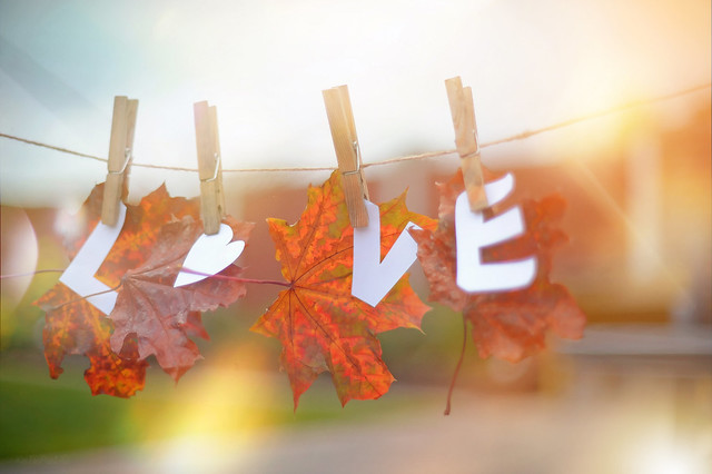 Do you LOVE Autumn..