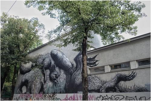 Roa / Streetart at Vienna
