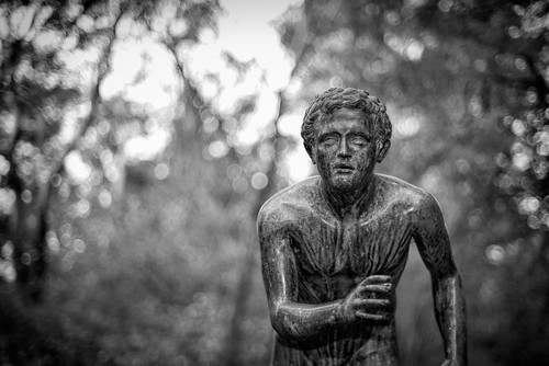Statue in the Garden | by Eddy Summers