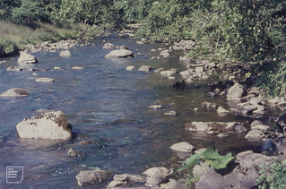 Taf Fechan below Pont Sarn water less milky than in faster flow where cutting orge. 1968