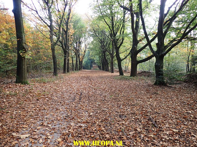 2017-10-18  Rhenen 25 Km (152)