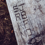 Campsite Picnic Table Carvings - Maplewood State Park