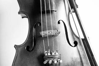Black and white violin close-up | by wuestenigel