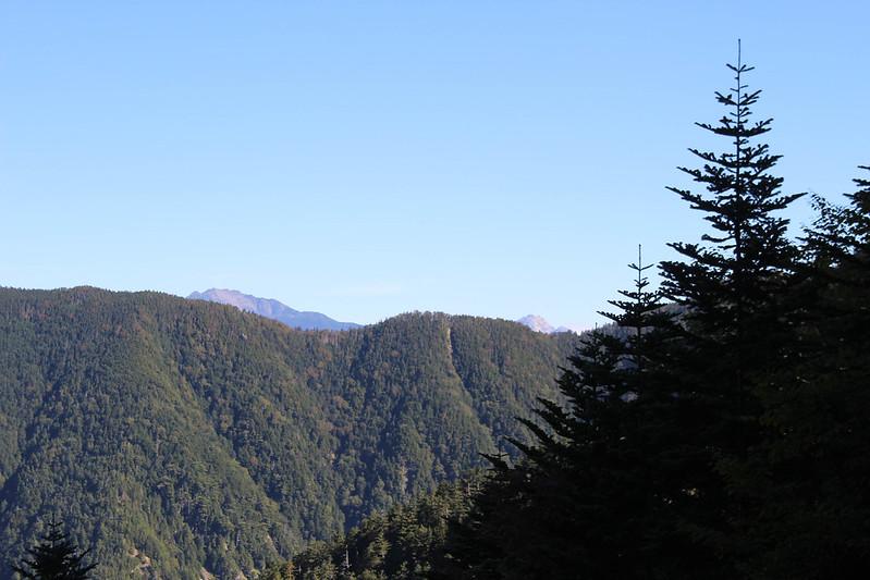 20170924-塩見岳(kuma)_0027.jpg
