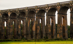 Ouse Valley Viaduct Section.jpg