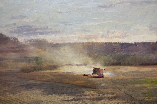 Harvest II | by ronphoto2009