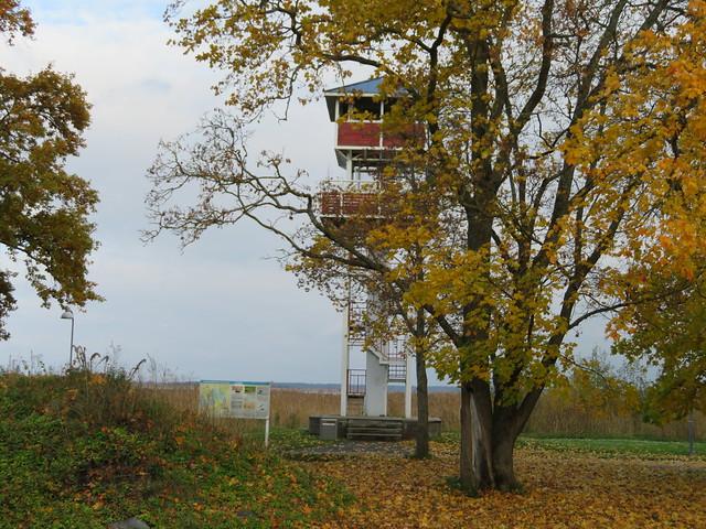Haapsalu Tagalahe linnuvaatlustorn