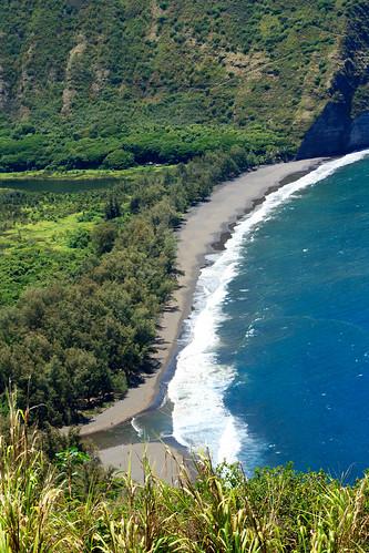hawaii kohala nature water waipiovalley sea hawaiʻi waipiʻovalley steep rainforest cliffs hawaai landscape pacificocean bigisland hāmākua