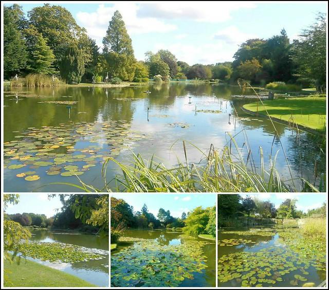 Burnby Hall Lake ..