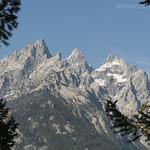 Teewinot Moutain, Grand Teton, and Mt. Owen