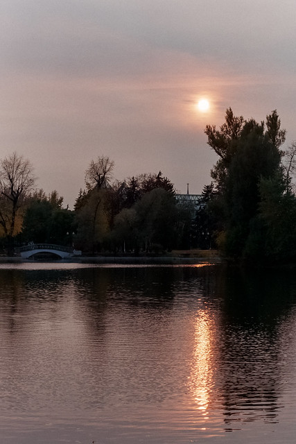 «Pink evening. Autumn silence»