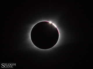 Solar Bling | by Seldom Scene Photography