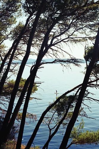 croatia 35mm olympus om1 olympusom1 olympus0m1 analogue analoguephotography analogphotography colourfilm colournegativefilm 35mmfilm grainy colourful paddleboarder makarska nugal trees