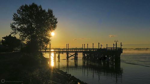 dykeroad fraserriver morning fall autumn sunrise mist river pier dock britishcolumbia canada steveston