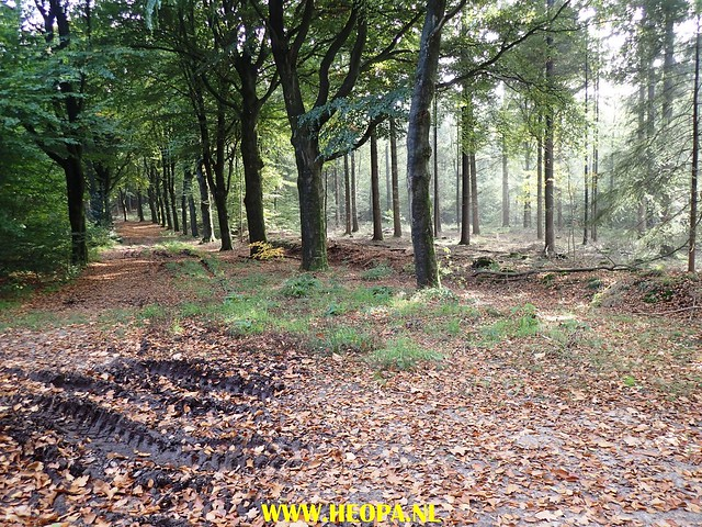 2017-10-18  Rhenen 25 Km (158)
