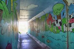 Bedford-Sackville Greenway