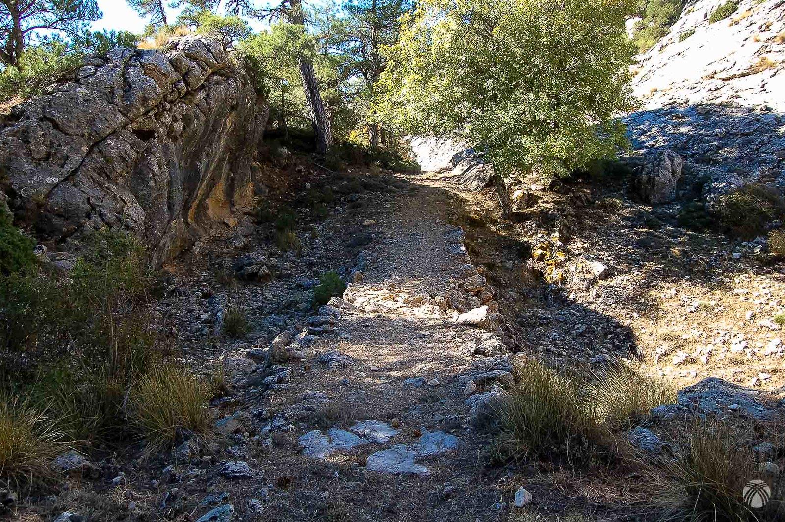 Viejo camino de herradura