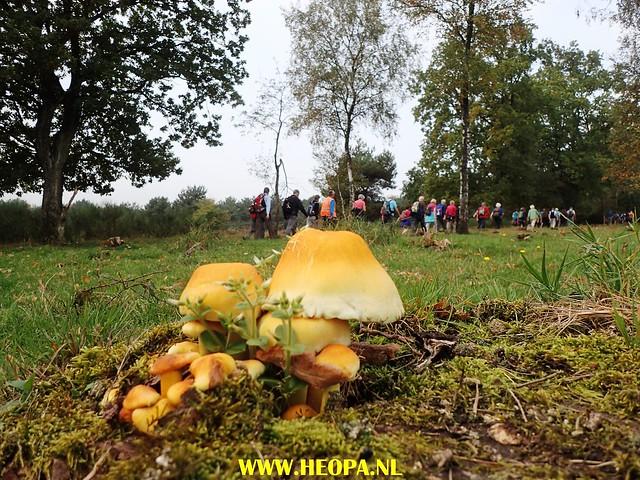 2017-10-18  Rhenen 25 Km (93)