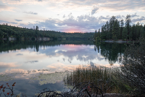 lake lac britton sunset evergreen pine