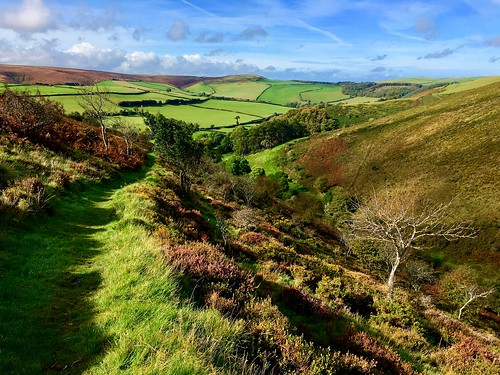 england uk devon valley combe autumn summer trees fields sunshine moorland exmoornationalpark nationalpark oare exmoor