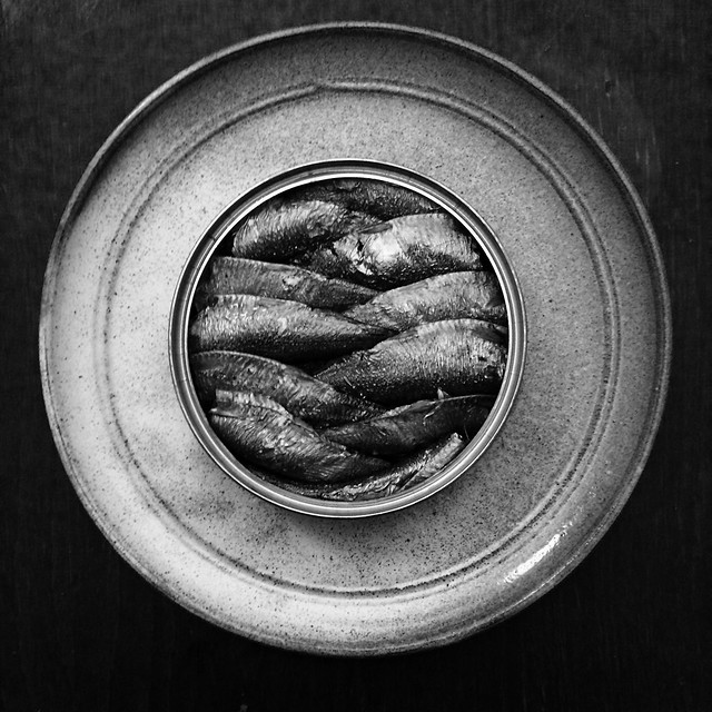 #beautifulgeometry : a tin of sprats for #flickrfriday