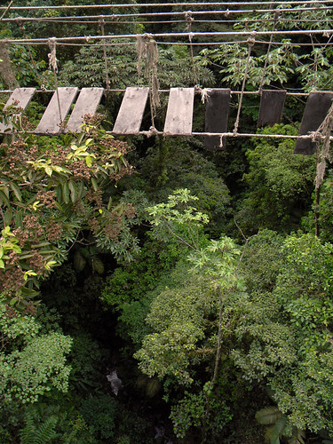 An old suspension bridge along the jungle trail of Hanging Bridges near Arenal Volcano in Costa Rica